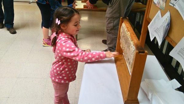 La Asociacion Gijonesa de Apicultura visita los colegios